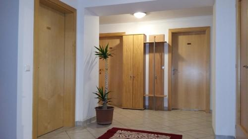 Apartment Altersberger Spittal