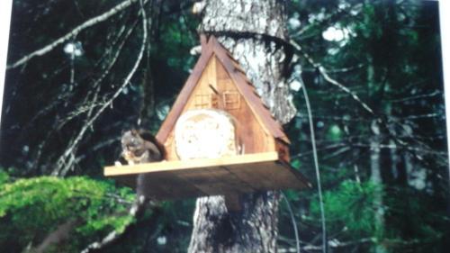 Beaver Hut Bed And Breakfast - Port Alberni, BC V9Y 9E4