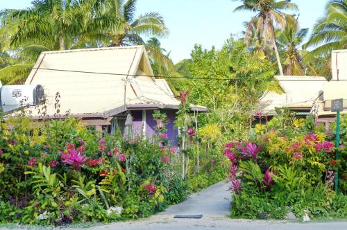 HotelThe Friendly Islander, Papiloa's