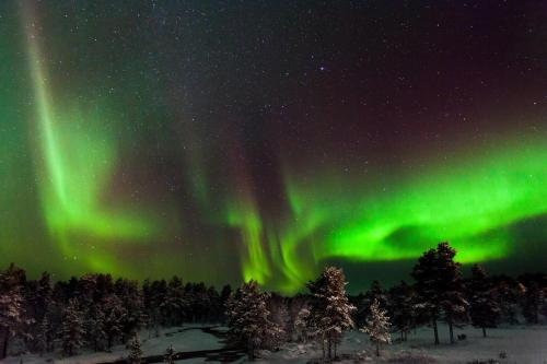 Kakslauttanen, 99830 Saariselkä, Lapland, Finland.