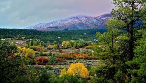 Taos Goji Farm & Eco-Lodge Retreat Photo