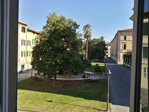 Inner City Pisa Foto 13