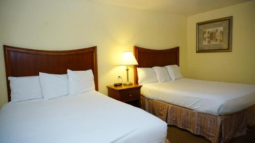 Baymont Inn & Suites Arlington DFW at Six Flags Drive Photo