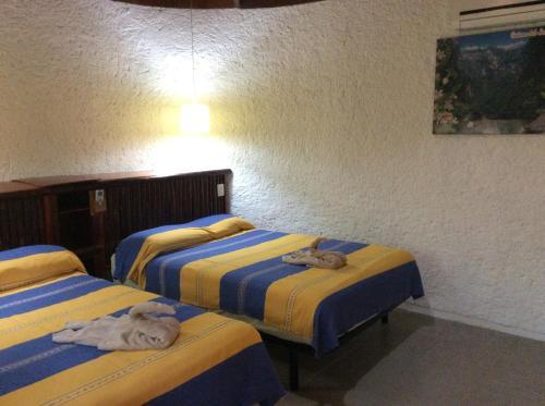 Villas Kin - Ha, Palenque