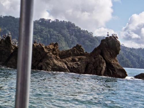 Cabinas Palmeras Lodge Photo
