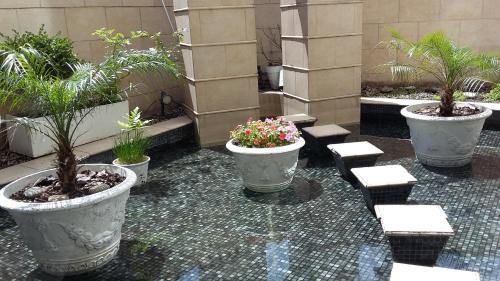 Abasto Hotel photo 12