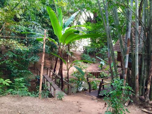 Rabeang Pasak Tree House Photo