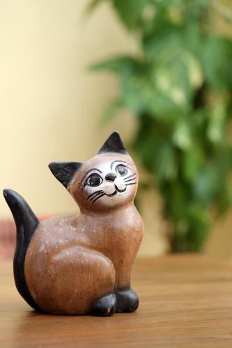 Thai Cat Hostel photo 11