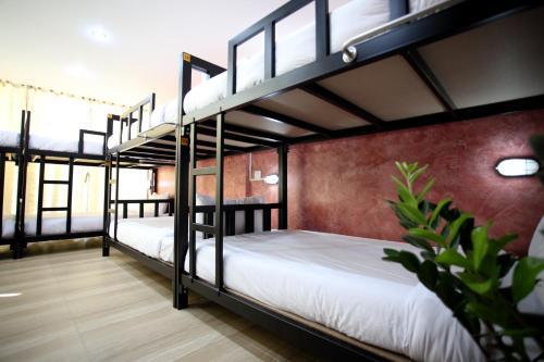 Thai Cat Hostel photo 29