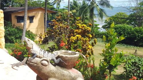 Hotel Los Mangos Photo