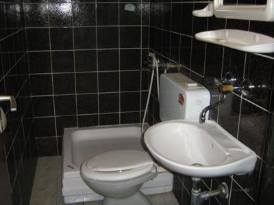 https://q-xx.bstatic.com/images/hotel/max500/585/5858185.jpg