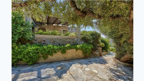 Áspros Potamós district, 720 55 Makrýgialos, Sitía, Crete.