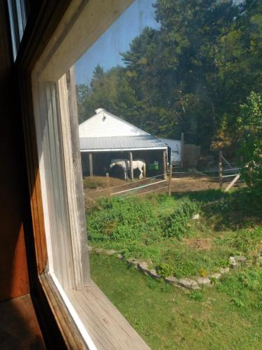No View Farm Photo