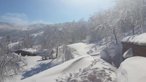Kazandere Parpalia Konaklama tatil