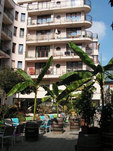Mango Aparthotel photo 14