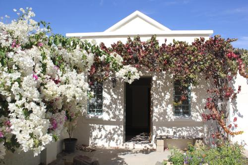 Prince Albert Garden Guesthouse Photo