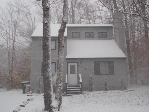 Cottage Photo