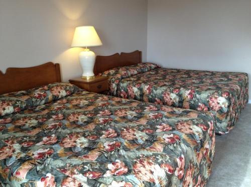 Lotus Motel - Cobourg, ON K9A 3A8