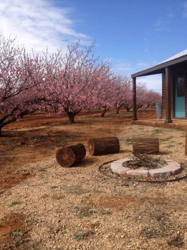 Jenschke Orchards B&b - Fredericksburg, TX 78624