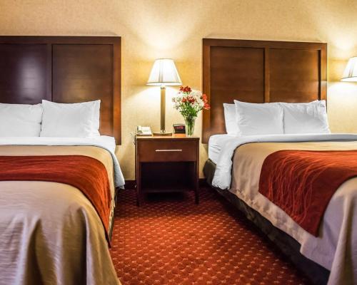 Comfort Inn Pocono Lakes Region Photo