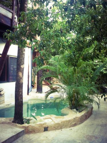 Casa Guanabana Photo