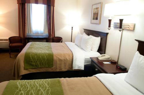 Comfort Inn Las Vegas Photo