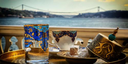 Istanbul Sait Halim Pasa Yalisi rezervasyon