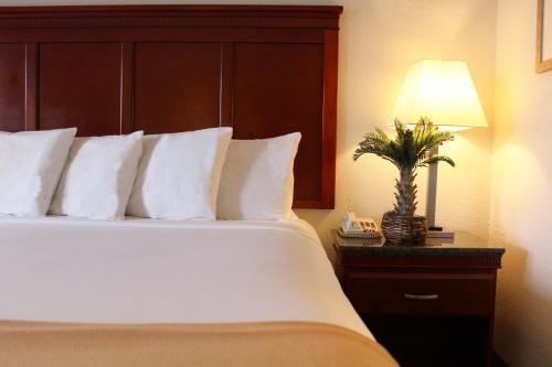 Hotel E Real photo 7