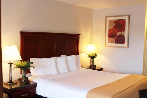Hotel E Real photo 9