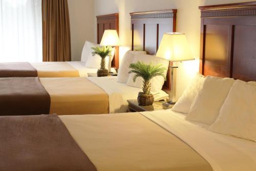 Hotel E Real photo 11