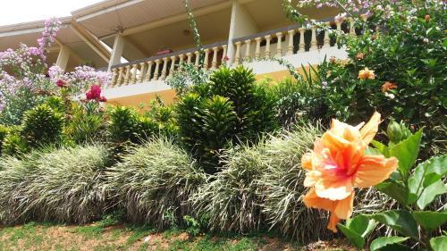 La Princesa Hotel Photo