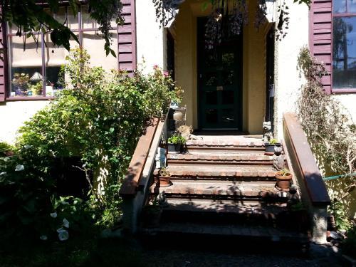 Cheshire Cat Cottage Photo