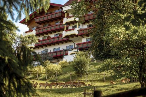 Bild des Natur- und Wohlfühlhotel Kastenholz