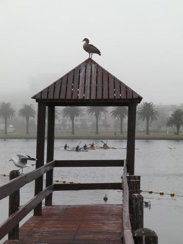 Apartment Island Views Photo