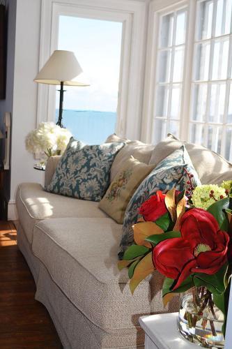 Sea Rose Photo