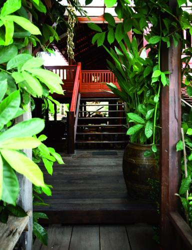 Ayutthaya retreat photo 32