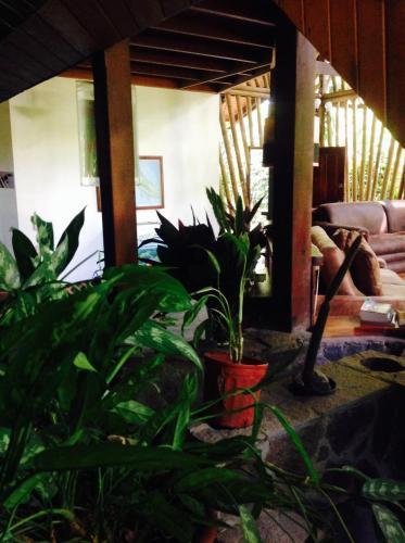 Casa Manglar Guesthouse Photo