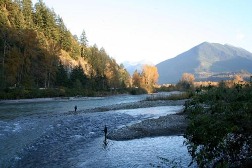 Vedder River Inn - Chilliwack, BC V2R 1C4