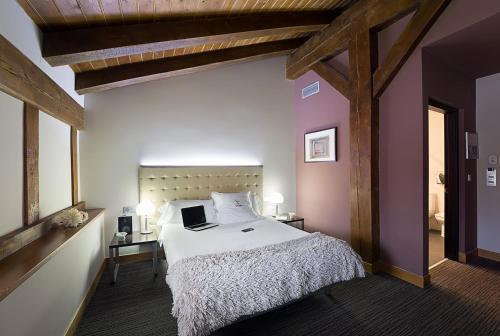 Habitación Doble - 1 o 2 camas - Ático - Uso individual Hotel Dolarea 29
