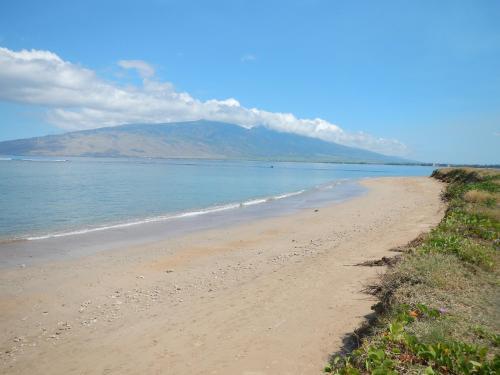 Kauhale Makai Condo On The Beach - Kihei, HI 96753