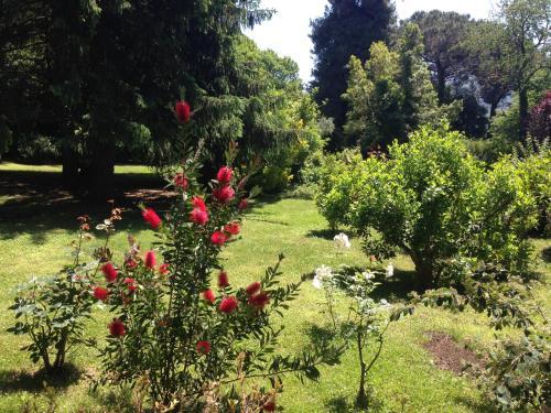 Villa Abbamer photo 8