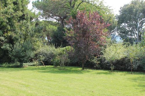 Villa Abbamer photo 10