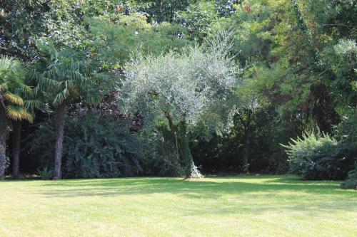 Villa Abbamer photo 19