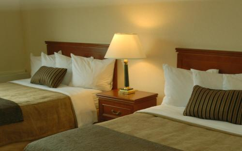 Quality Hotel Montreal East Photo