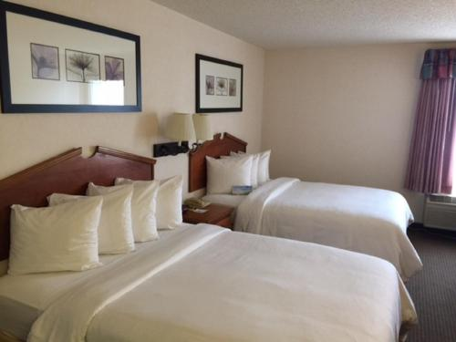 Days Inn & Suites By Wyndham Denver International Airport - Denver, CO 80249