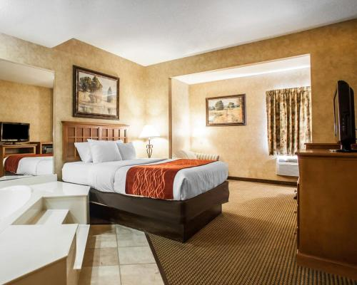 Comfort Inn Macon Photo