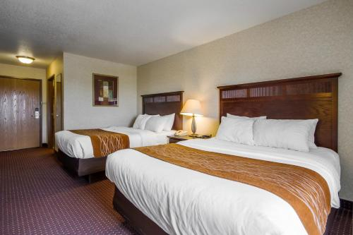 Comfort Inn & Suites DeForest Photo