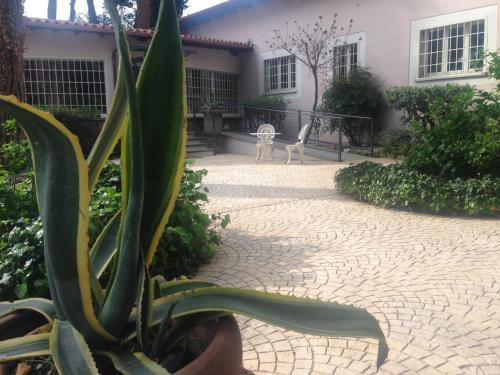 Villa Abbamer photo 55