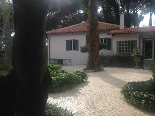 Villa Abbamer photo 59