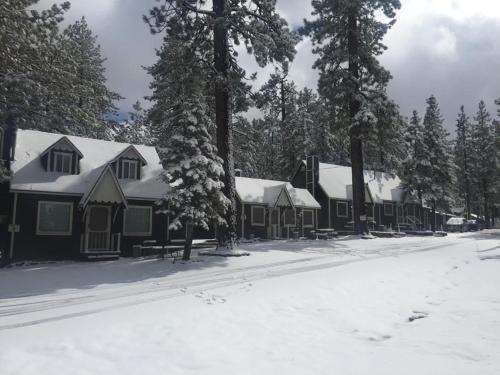 Cabin 3 Photo